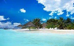 Jamaica Wonder