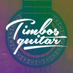 Timbos Guitar